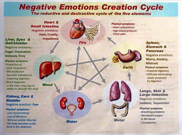 emotions negative cycle