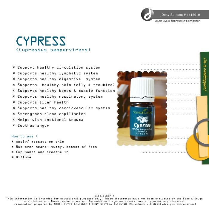 cypress-deny